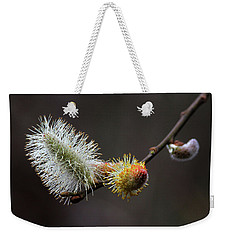 Pussy Willow Stony Brook New York Weekender Tote Bag