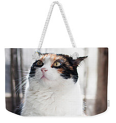 Weekender Tote Bag featuring the photograph Puzzled by Laura Melis