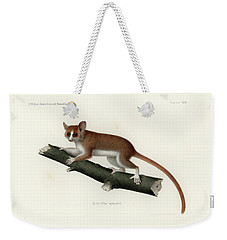 Pygmy Mouse Lemur Weekender Tote Bag