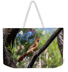 Pyrrhuloxia At Work Weekender Tote Bag