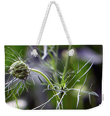 Weekender Tote Bag featuring the photograph Qal 2016 2 by Tina M Wenger