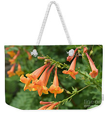Weekender Tote Bag featuring the photograph Qantu by James Fannin
