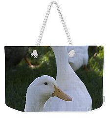 Weekender Tote Bag featuring the photograph Quackers by Tara Lynn