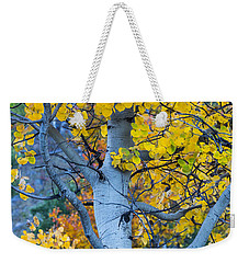 Quaking Aspen Weekender Tote Bag