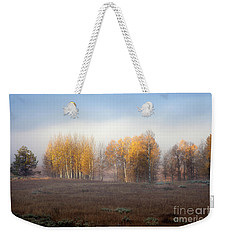 Quaking Aspen Trees At Dawn, Grand Teton National Park, Wyoming Weekender Tote Bag