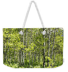 Quaking Aspens 2 Weekender Tote Bag by Cynthia Powell