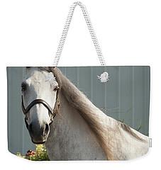 Weekender Tote Bag featuring the photograph Que Pasa? by Carol Lynn Coronios