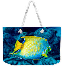 Weekender Tote Bag featuring the photograph Queen Angelfish II by Perla Copernik