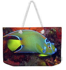 Queen Angelfish, U. S. Virgin Islands 2 Weekender Tote Bag