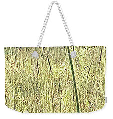Weekender Tote Bag featuring the photograph Queen Anne by Melinda Blackman