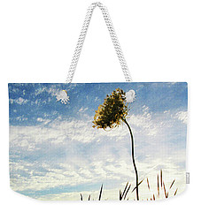 Queen Anne's Lace At Sunset Weekender Tote Bag