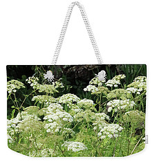 Queen Annes Lace Daucus Carota Weekender Tote Bag