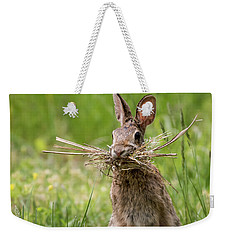 Rabbit Collector Square Weekender Tote Bag by Terry DeLuco
