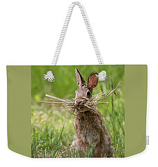 Rabbit Collector  Weekender Tote Bag by Terry DeLuco