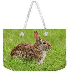 Rabbit In A Grassy Meadow Weekender Tote Bag