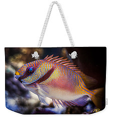 Rabbitfish Weekender Tote Bag