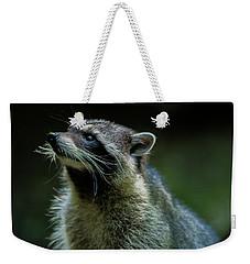 Raccoon 1 Weekender Tote Bag