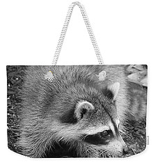 Raccoon - Black And White Weekender Tote Bag by Carol Groenen