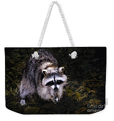 Weekender Tote Bag featuring the photograph Raccoon  by Elaine Manley