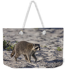Raccoon On The Beach Weekender Tote Bag