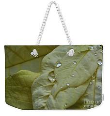 Rain Drops On A  White Poinsettia Weekender Tote Bag