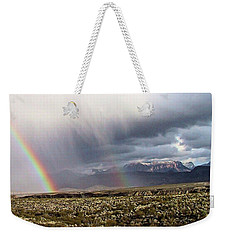 Weekender Tote Bag featuring the painting Rain In The Desert by Dennis Ciscel