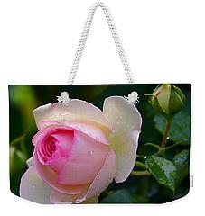 Weekender Tote Bag featuring the photograph Rain-kissed Rose by Byron Varvarigos