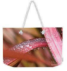 Rain Shower Weekender Tote Bag by Trevor Chriss