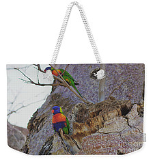 Rainbow Lorikeets Xiii Weekender Tote Bag