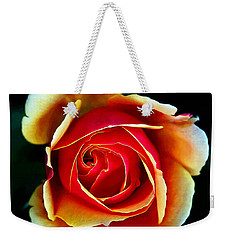 Weekender Tote Bag featuring the photograph Rainbow Rose by John Haldane