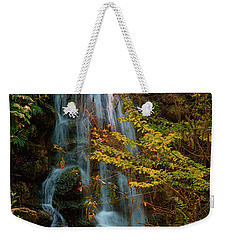 Weekender Tote Bag featuring the photograph Rainbow Springs Waterfall by Louis Ferreira