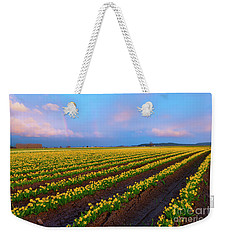 Weekender Tote Bag featuring the photograph Rainbows, Daffodils And Sunset by Mike Dawson
