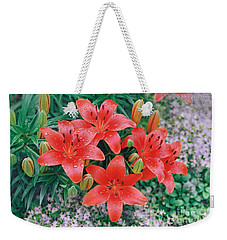 Weekender Tote Bag featuring the photograph Raindrops On Crimson Pixie Asiatic Lily by Nancy Lee Moran