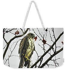 Weekender Tote Bag featuring the photograph Rained Out by Laura Ragland