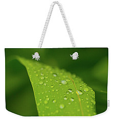 Weekender Tote Bag featuring the photograph Rainfall by SR Green
