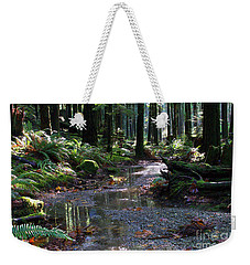 Weekender Tote Bag featuring the photograph Rainforest Trail 2 by Sharon Talson