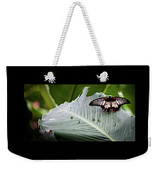Weekender Tote Bag featuring the photograph Raining Wings by Karen Wiles