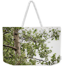 Rainy Day Birch -  Weekender Tote Bag