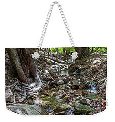 Ramsey Canyon Preserve Weekender Tote Bag