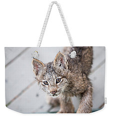 Does Click Mean Edible Weekender Tote Bag