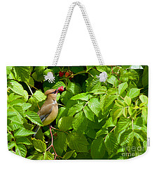 Raspberry Bandit Weekender Tote Bag by Sean Griffin