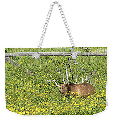 Raspberry, Sow Grizzly Weekender Tote Bag