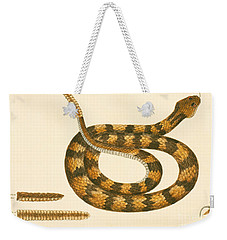 Rattlesnake Weekender Tote Bag by Mark Catesby