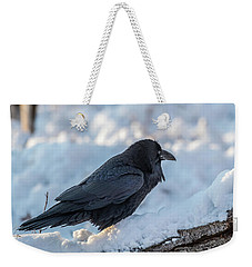 Weekender Tote Bag featuring the photograph Raven by Paul Freidlund