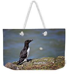 Razorbill Weekender Tote Bag by Vicki Field