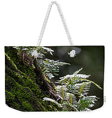 Reach For The Light Weekender Tote Bag by Christopher L Thomley