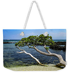 Weekender Tote Bag featuring the photograph Reaching by Pamela Walton