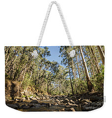 Weekender Tote Bag featuring the photograph Reaching Skyward by Linda Lees