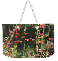 Reaching Tranquility Weekender Tote Bag