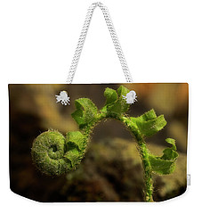 Weekender Tote Bag featuring the photograph Rebirth by Mike Eingle
